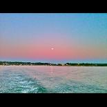 Maine Moon